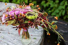 Vackra: [en vild solfjäderbukett...]