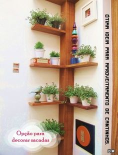 selbstgebautes Eckregal ideen pflanzen vasen baum ähnlich ähnliche Projekte un… homemade corner shelf ideas plant vases tree similar projects and ideas as presented in the picture you can find in our magazine Indoor Garden, Indoor Plants, Balcony Garden, Tree Garden, Garden Office, Garden Hose, Home Projects, Projects To Try, Plant Shelves