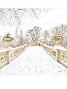 Les plus belles photos Instagram de la neige à New York 13