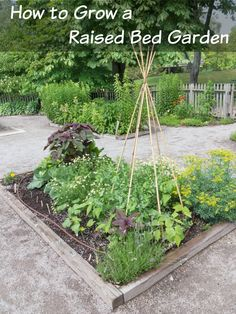 Container Gardening For Beginners Frugal Gardening For Beginners - Helpful frugal gardening tips for beginners and anyone wanting to grow a garden on a budget. Raised Vegetable Gardens, Vegetable Garden For Beginners, Vegetable Garden Design, Diy Garden, Gardening For Beginners, Raised Garden Beds, Gardening Tips, Raised Bed, Vegetable Gardening