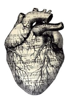 music comes from the heart.