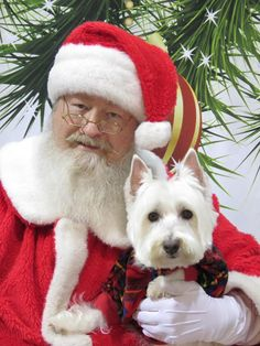 Maxwell and Santa! Max is 6 1/2 yrs. old, and still thinks he is a puppy. He is such a good boy!