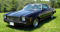 ✿1973 Chevrolet Chevelle Laguna✿ Maintenance/restoration of old/vintage vehicles: the material for new cogs/casters/gears/pads could be cast polyamide which I (Cast polyamide) can produce. My contact: tatjana.alic@windowslive.com