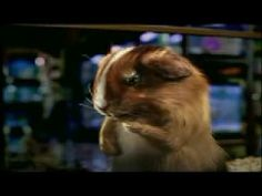 Super Bowl Blockbuster Mouse Commercial FUNNY - Watch www Super-Bowl-XLI...: Love the whole Carl and Ray series, but this click the mouse ad is awesome.
