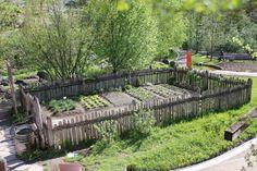 Was Gesundes aus dem traditionellen Bauerngarten? | Qualcosa di sano dal tradizionale Orto di Montagna #bio