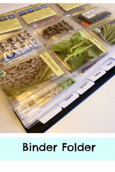 The Windmill Paddock: 5 Ways to store seeds from your garden.