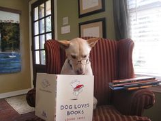 <b>These dogs are just catching up with their summer reading.</b> What do dogs like to read about? Dogs, mostly. Also, a significant number of literate dogs seem to need glasses.