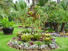 Totara Waters Sub-Tropical Garden - Garden Stay Accommodation