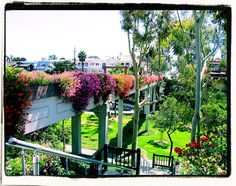 The Goldenrod Footbridge in Corona del Mar. We walked this bridge to the beach every day when we lived there. Photo by JoleneMarie.