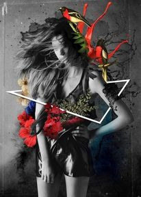 All sizes   Black Swan — Designspiration