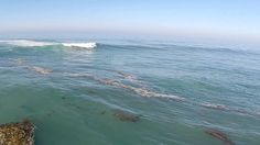 Here is another short video of a few big waves from the hurricane swell that hit southern California at the end of August 2014. #surfing #djiphantom2 #bigwavesurfing #california #beach #ocean #sea #surf #bigwaves #drone #aerial #quadcopter