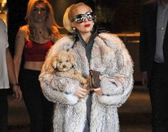 Lady Gaga and dog Fozzi