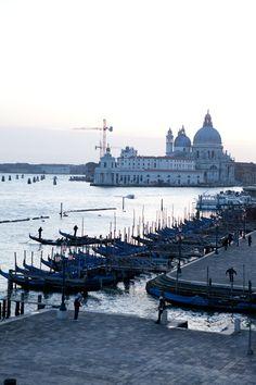 Venice Carla Coulson
