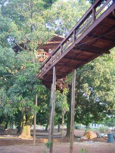 Passarelas - Casa na Árvore