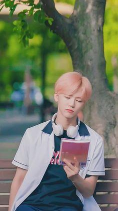 How NCT member treat and protect you as their girlfriend. Taeyong, Nct 127, Winwin, K Pop Wallpaper, Wallpaper Ideas, Ntc Dream, Johnny Seo, Nct Dream Jaemin, Jisung Nct