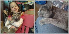 Elsa era una gatita abandonada que buscaba un hogar y Geno una niña que acababa de perder a su amiga Inga ...ahora sólo queda caminar princesas......  www.caniscat.es