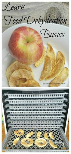 I got a new food dehydrator for Christmas, so I am starting to learn food dehydration basics. Food dehydration is the perfect way to make your fruits last longer, make yummy meat jerky, or dehydrate your vegetables for your long-term food storage! Dry Food Storage, Long Term Food Storage, Storage Ideas, Fruit Storage, Storage Solutions, Dehydrated Food, Dehydrated Bananas, Dehydrated Vegetables, Veggies