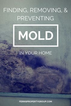 Mold inside your home can be dangerous and cause major damage. Finding, removing, and preventing mold in your home is essential to keeping your family safe.