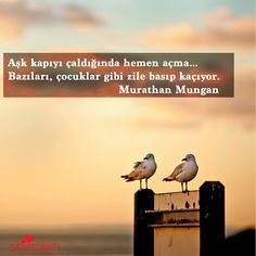 Aşk kapıyı çaldığında hemen açma... Bazıları, çocuklar gibi zile basıp kaçıyor.   - Murathan Mungan
