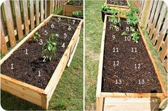 garden beds [plans from ana white]