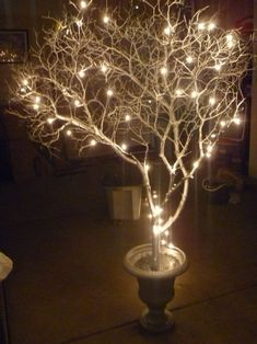 Lights and tree branches... would be a good look for either a FALL festival.... or a January Hot Cocoa party.... or as  simple cheap.... winter wedding table decor