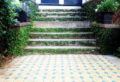 Love this manicured entryway on Bull Street #harlestonvillage #charleston #architecture