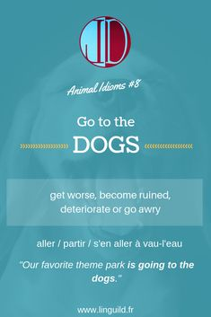 """Animal idiom: """"Go to the dogs"""" 🐶 LinguiLD /Idioms/ (Design by LinguiLD)"""