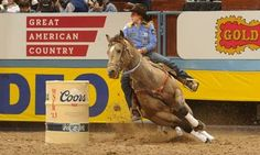 Taylor Jacob and Bo just won round 4 of the NFR with a 13.49 SO fast.....Love this horse!! And he's pretty too.