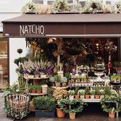 48 new ideas flowers shop cafe plants Cafe Plants, Garden Plants, Flower Market, Flower Shops, Cafe Shop, Shop Fronts, Garden Shop, Lovely Shop, Flower Farm