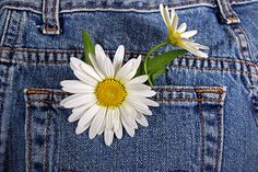 Forever In Blue Jeans by Maria Dryfhout