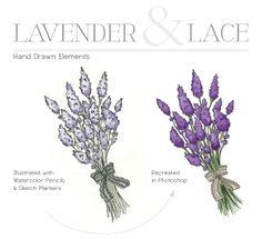 Lavender-and-lace-blog-design-hand-drawn-elements