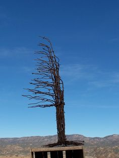 Christmas Tree Made From Recycled Barbed Wire ( Large Rusty Windswept Tree )
