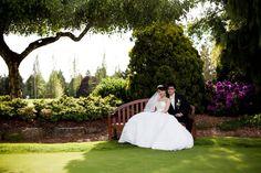 Jonathan & Rose Wedding - 117915239081979568410 - Picasa Web Albums Rose Wedding, Albums, Weddings, Picasa, Mariage, Wedding, Marriage, Casamento