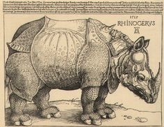 Albrecht Dürer-O Rinoceronte Rhinocerus-1515-gravura-xilogravura