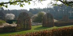 Beech trees as you've never seen them before at 'Schoten', a private garden designed by Jacques Wirtz.