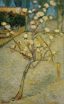 Small Pear Tree in Blossom / Vincent van Gogh / 1888 / Van Gogh Museum