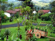 Grounds at Villa Blanca Clould Forest Hotel  - Costa Rica!