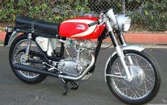 1967 Ducati 250 MK3