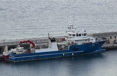 Una tonnara della flotta di Cetara