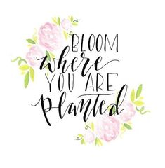 Happiness Blooms From Within🌸💐🌷 #happy #bloom #grow #flowers #happiness #love #selflove