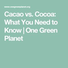 Cacao vs. Cocoa: What You Need to Know | One Green Planet