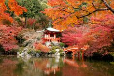 """Daigo-ji Temple, a World Heritage Site, spreads across Daigo-san Mountain and is well-known as the """"Temple of Flowers"""". In 874, Godai Hall was built at the top of the mountain by Buddhist monk Shobo. Later, the garan (main complex), small buildings, and..."""