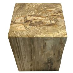 """POLISHED SQUARE PETRIFIED WOOD STOOL Dimensions 14"""" (W) x 14"""" (D) x 19"""" (H) Polished Square Petrified Wood Stool Matching set available, Item #083 Petrified Wood Side Table offered by Organic Findings. Our Petrified Wood Tables are part of a large collection of unique objects. We combine contemporary design ideas with global product sourcing. Organic Findings sources the highest quality petrified wood, please visit our online store."""