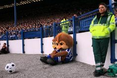 Sheffield Wednesday mascots Ozzie and Barney Owl at Hillsborough Sheffield Wednesday Fc, Sports Advertising, Great Team, Owls, Base, Fictional Characters, School, Humor, Owl