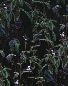 Folia Birds Dark Wallpaper