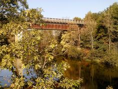 """High quality trails abound for visitors to Trego, Wis., region. Read about these and nearby trails in """"Headin' to the Cabin: Day Hiking Trails of Northwest Wisconsin."""""""