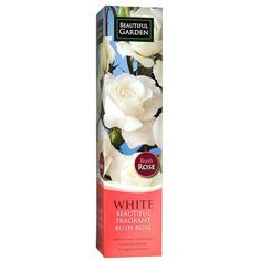 Bush Rose - White | Poundland