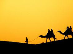 Jaisalmer Desert, Rajasthan