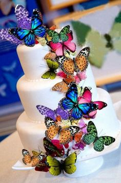 Edible wafer butterfly cake