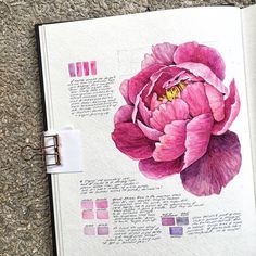 Photography Sketchbook Ideas Paintings 31 Ideas – Art World 20 Art Floral, Watercolor Flowers, Watercolor Paintings, Peony Painting, Tattoo Watercolor, Gcse Art Sketchbook, Sketchbooks, Sketching, Watercolor Sketchbook
